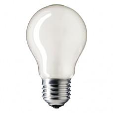 Photolux P3/3 ES 240v 75w E27 Screw PF603E Enlarger Lamp